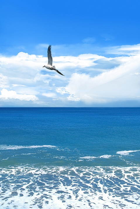 sea-ocean_00003_s